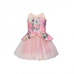 Baby Fashionistas Floral Peplum with See Thru Girl Party Dress in Pink image here